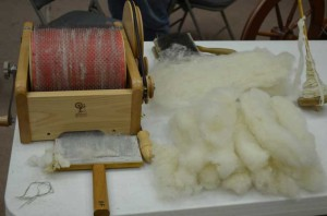 Carding and spinning the fleece